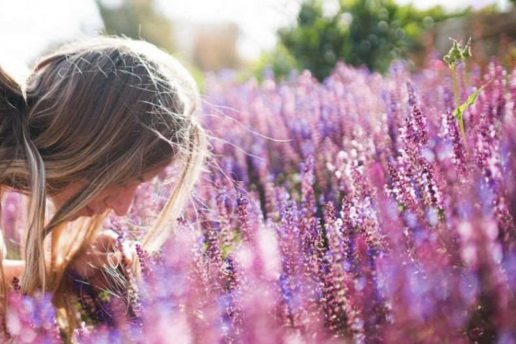 What is the best aromatherapy for anxiety?